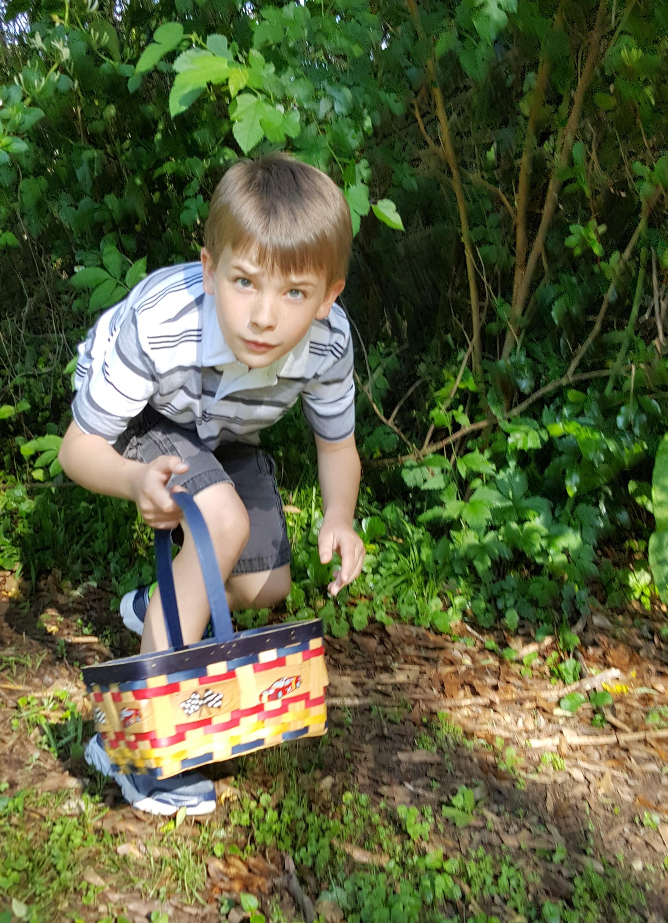 Egg Hunt4.jpg