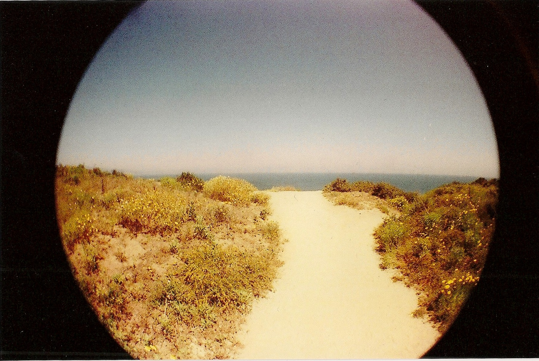 point dume 2013