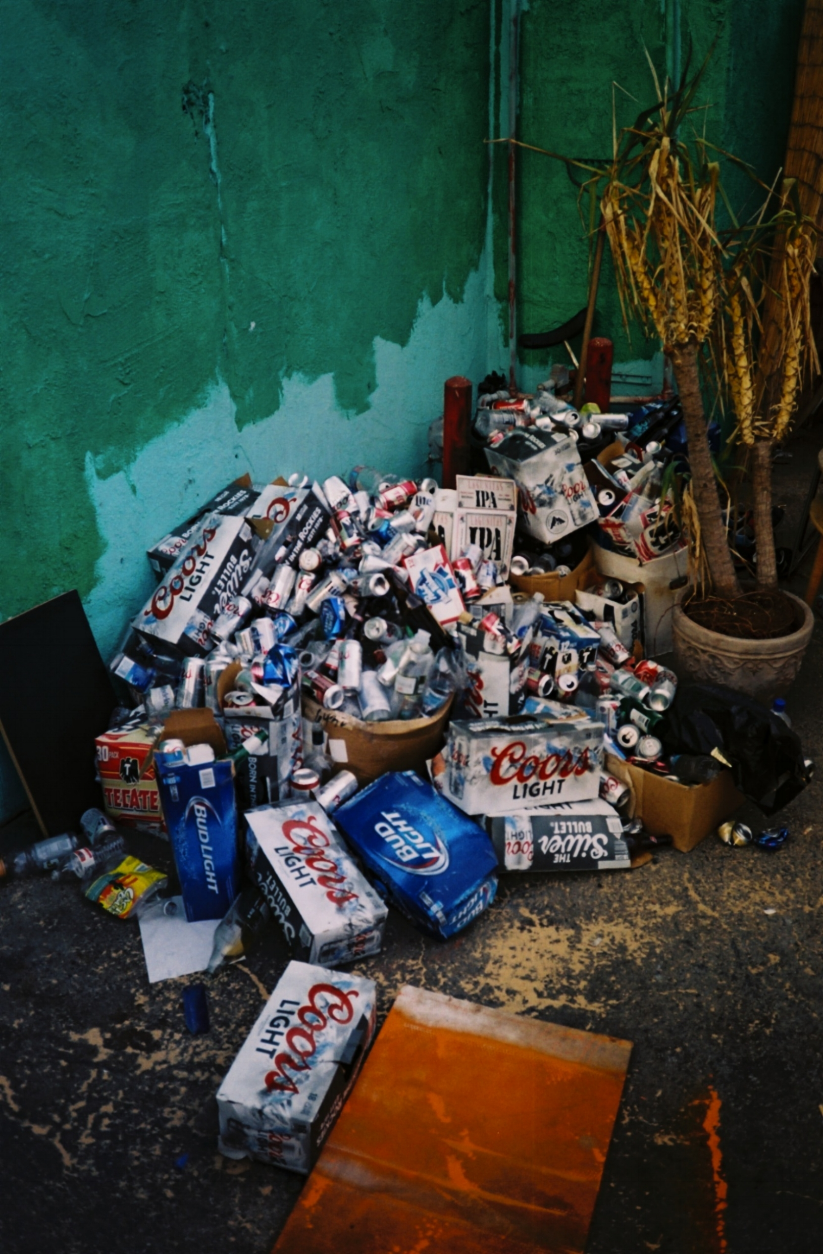 beer  s.jpg
