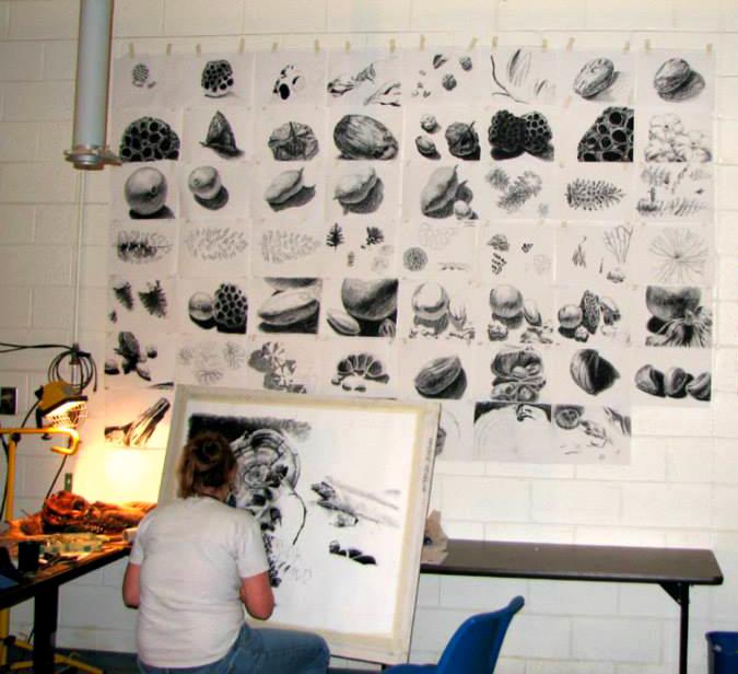 Shannon_Drawing_In_Studio.jpg