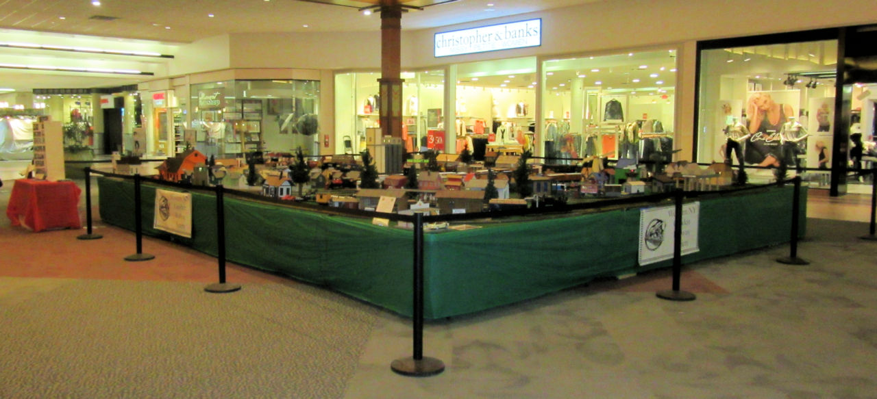 WNYGRS McKinley Mall Display 2018 - Feb (20).JPG