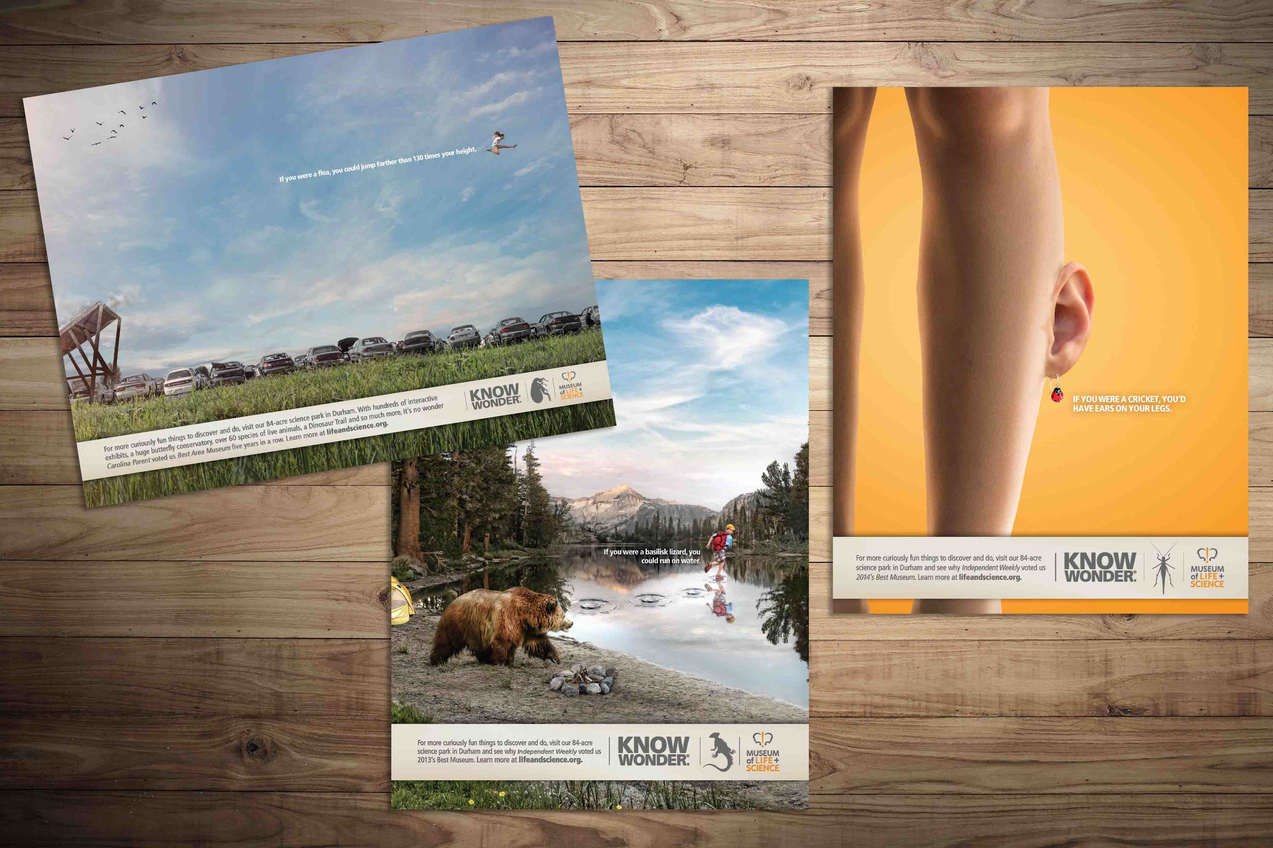 Integrated campaign for The Museum of Life + Science.  See the rest of the case study  here .