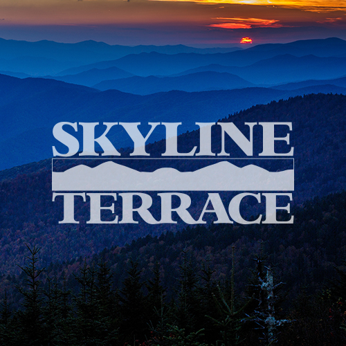 Skyline Terrace Integrated Ad Campaign