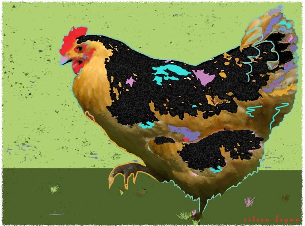 Yellow-Chicken.jpg