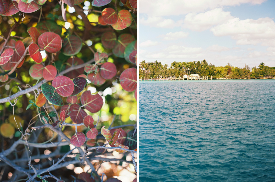 los-angeles-photographer-victoria-oleary-on-vacation-in-bahamas-pictures-1a.jpg