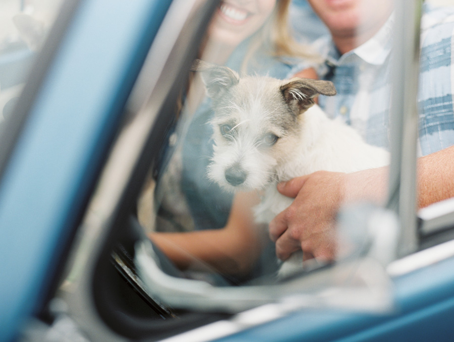 furbaby-family-dogs-cats-volkswagon-bug-victoria-oleary-photography-palos-verdes-17.jpg