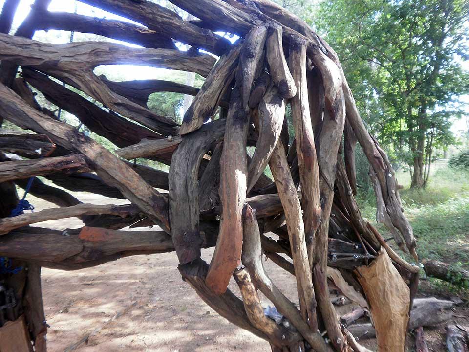 Detail, Hyena . Mopane heartwood and steel. (2010)