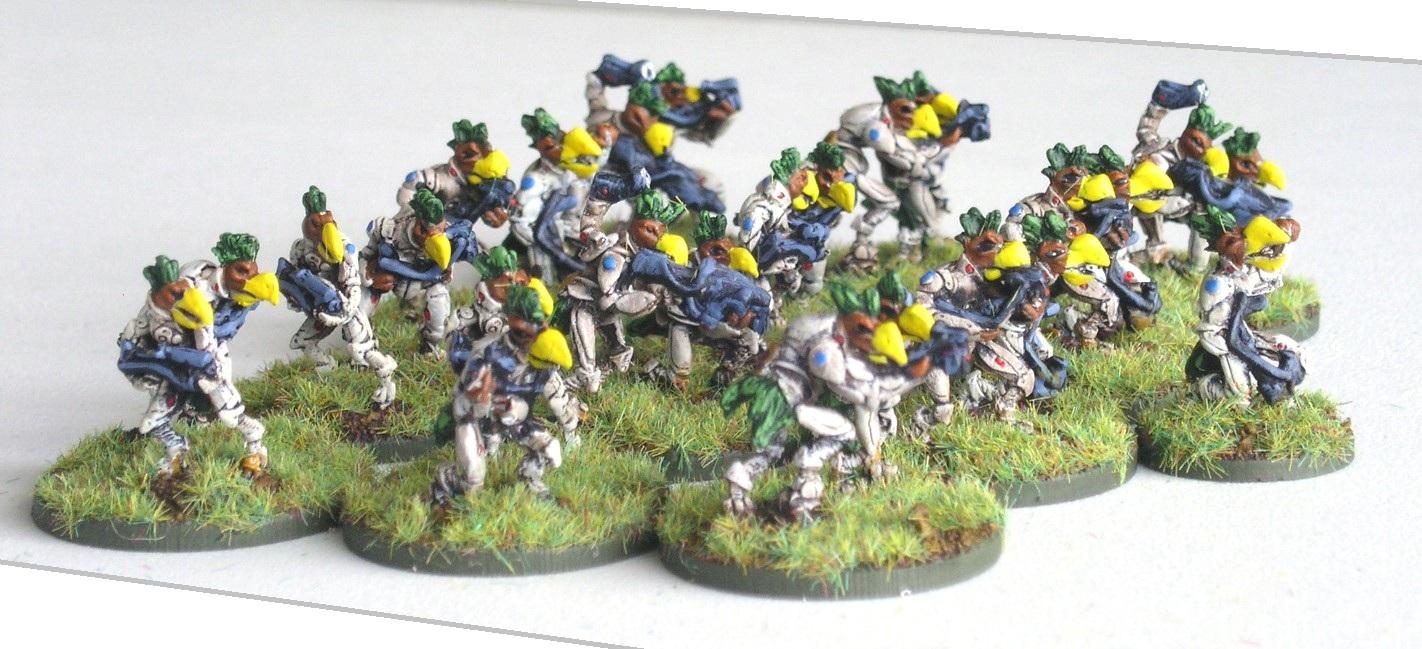 1st (Harook) Platoon