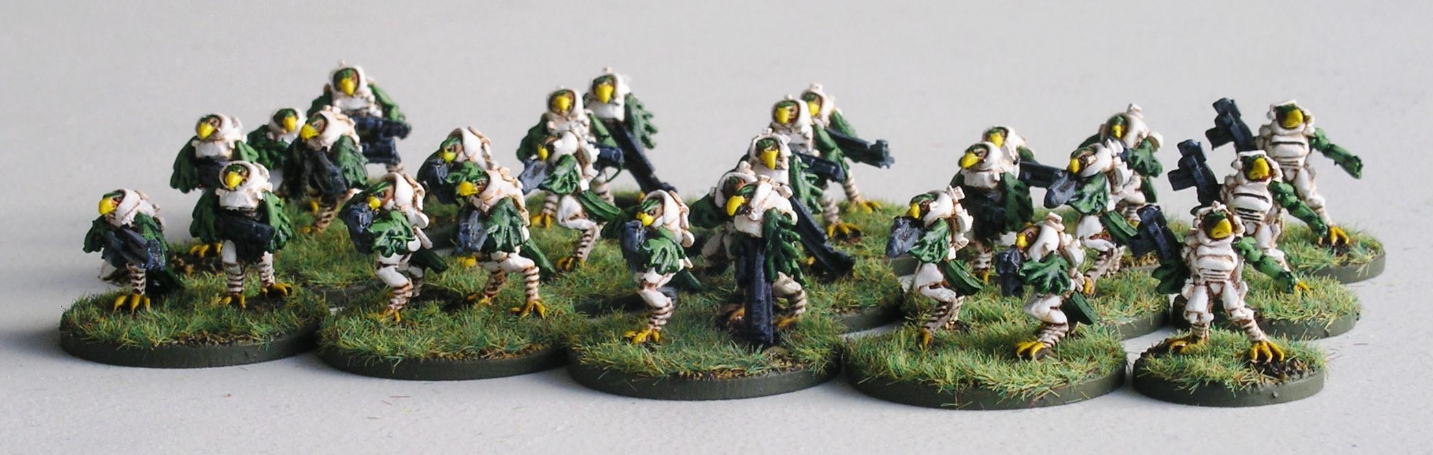 1st (Hauk) Airmobile Platoon