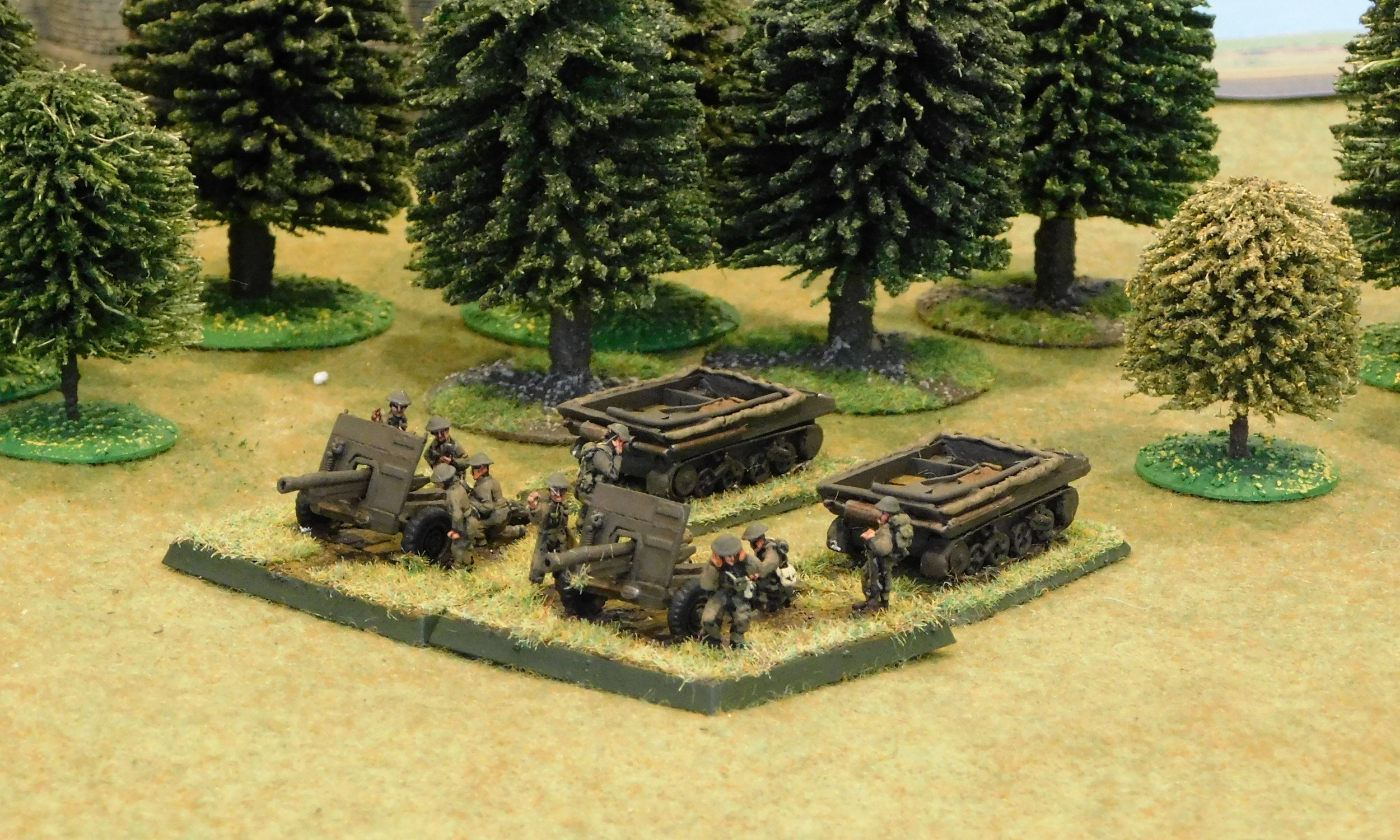 Artillery Troop (18/25 pdr guns)(remnants)