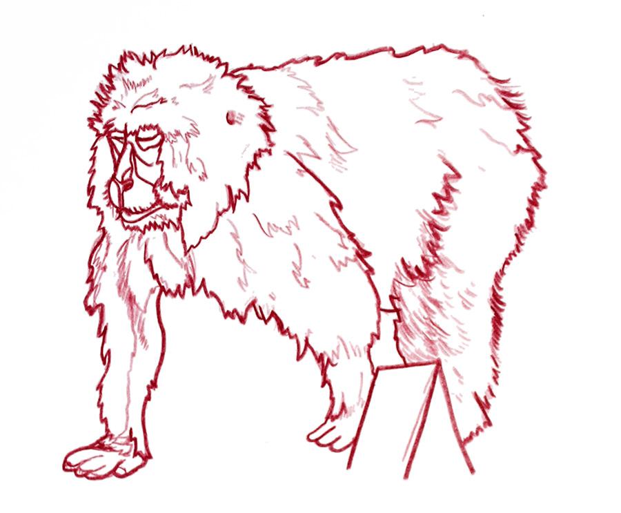 monkey2.1.jpg