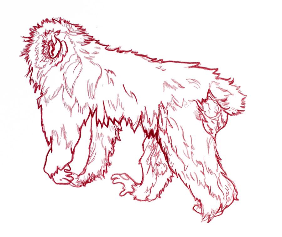 monkey4.2.jpg