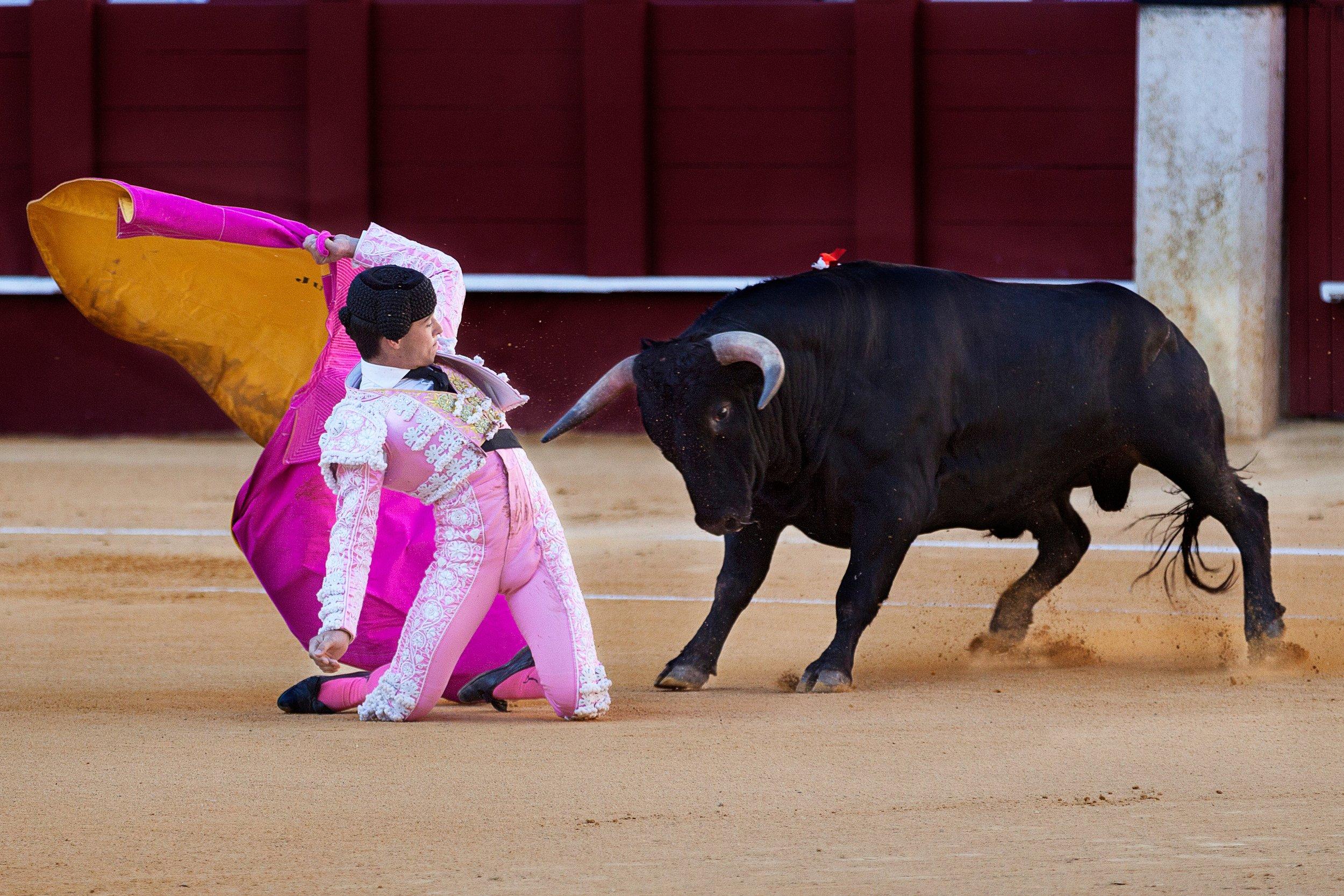Foto:  Quino Al  fur www.unsplash.com