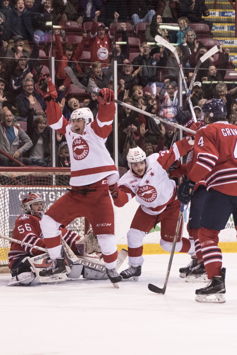 Ali Pearson/Sault This Week  Hot Dogs: Sault Greyhounds celebrate a goal with 3.1 seconds in the finals period to tie the game.
