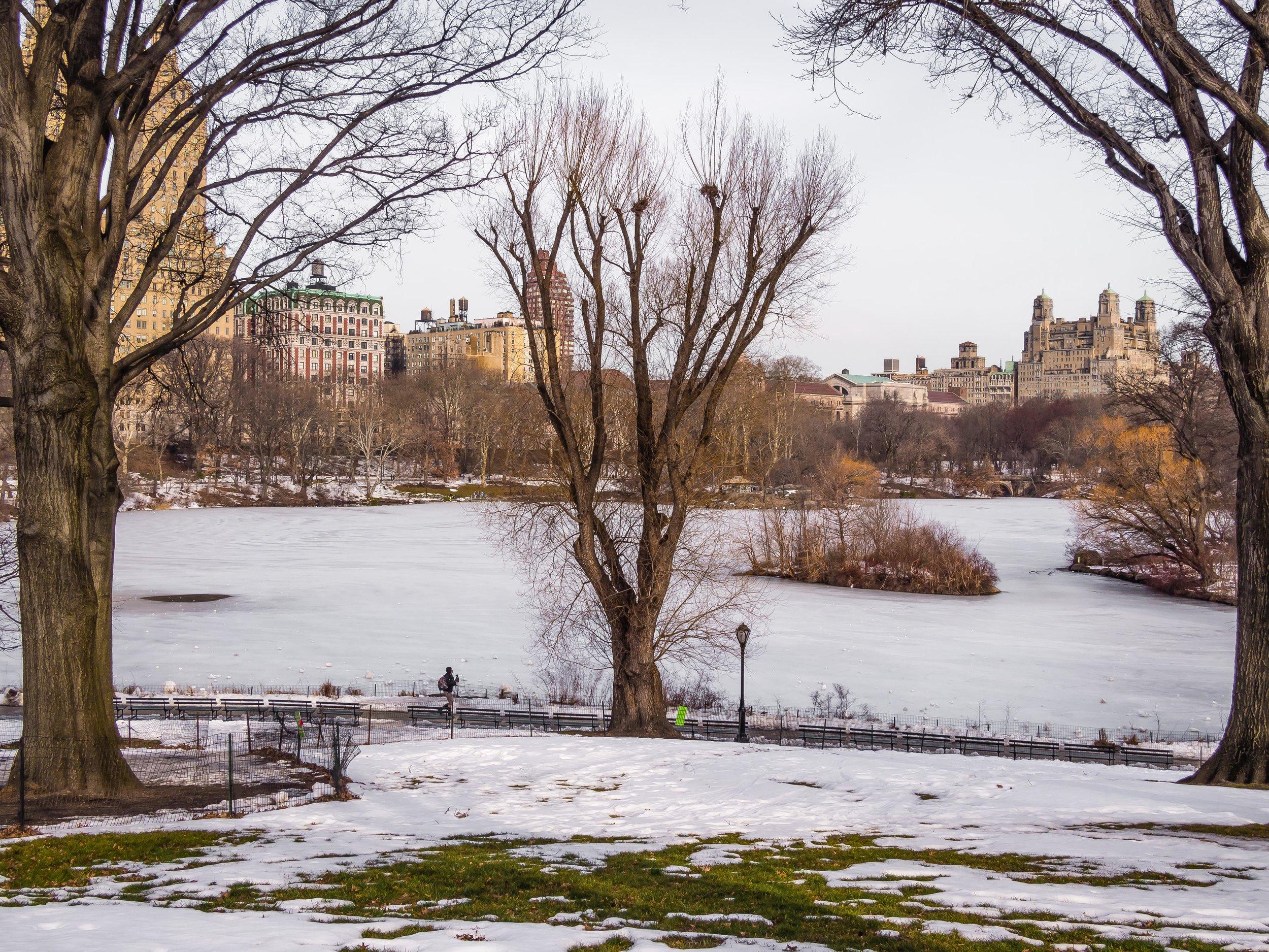 The Lake, January 2016