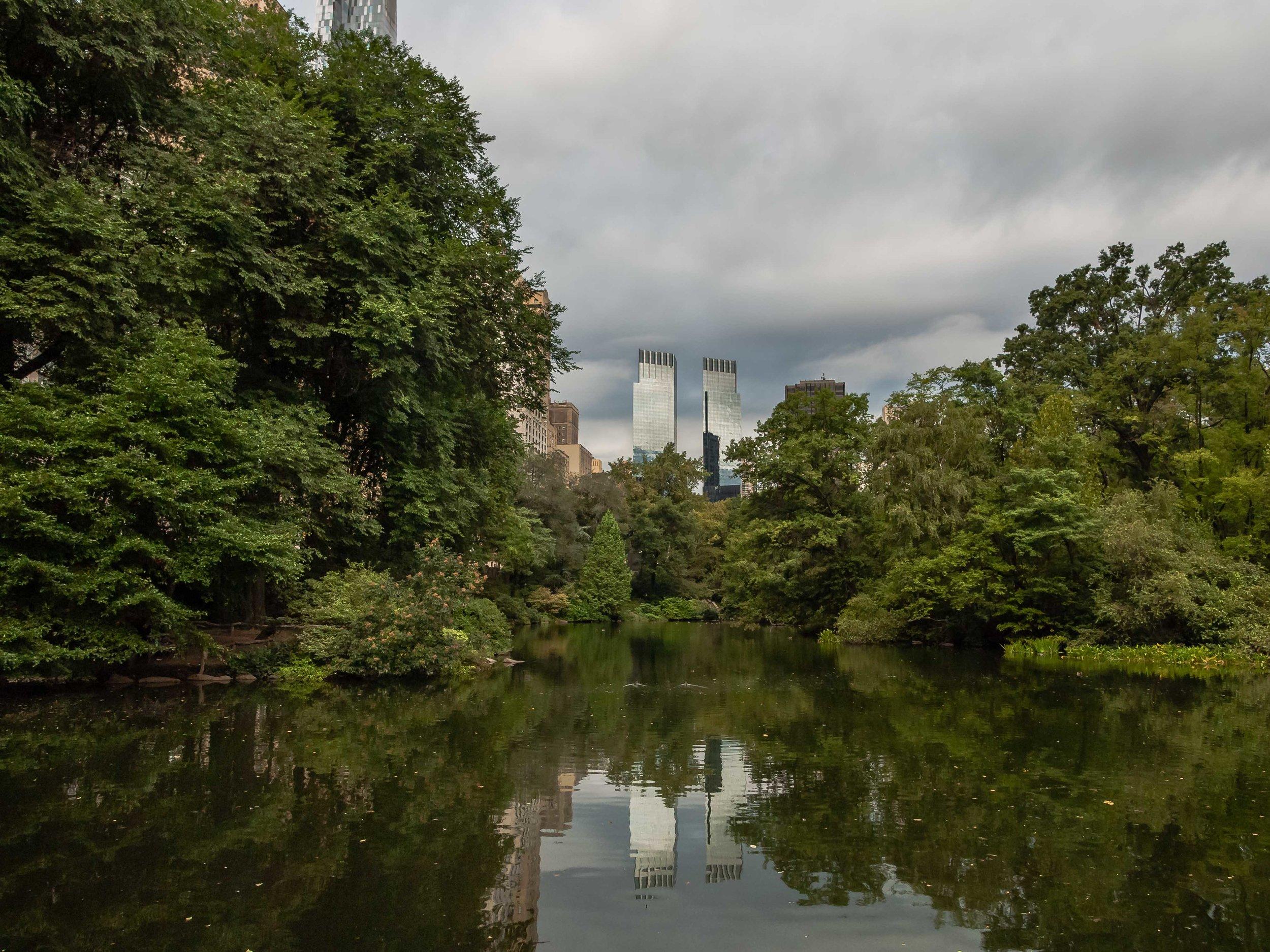 The Pond, September 2015