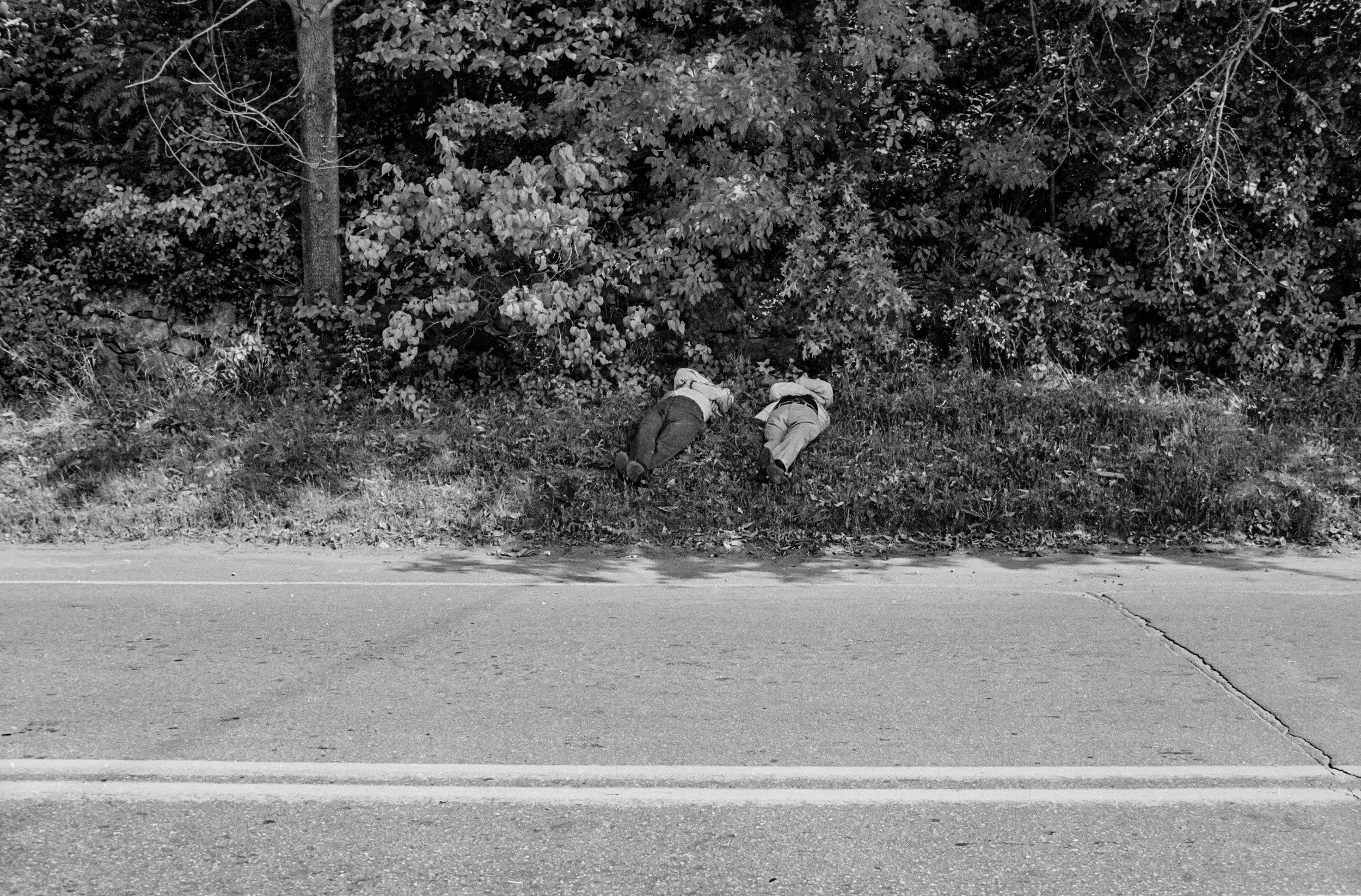 roadbodies.jpg