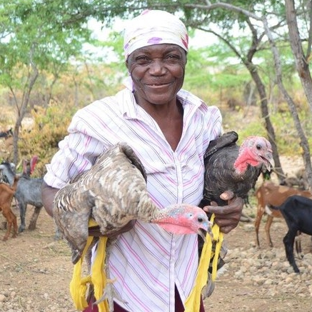 Improving Food Security