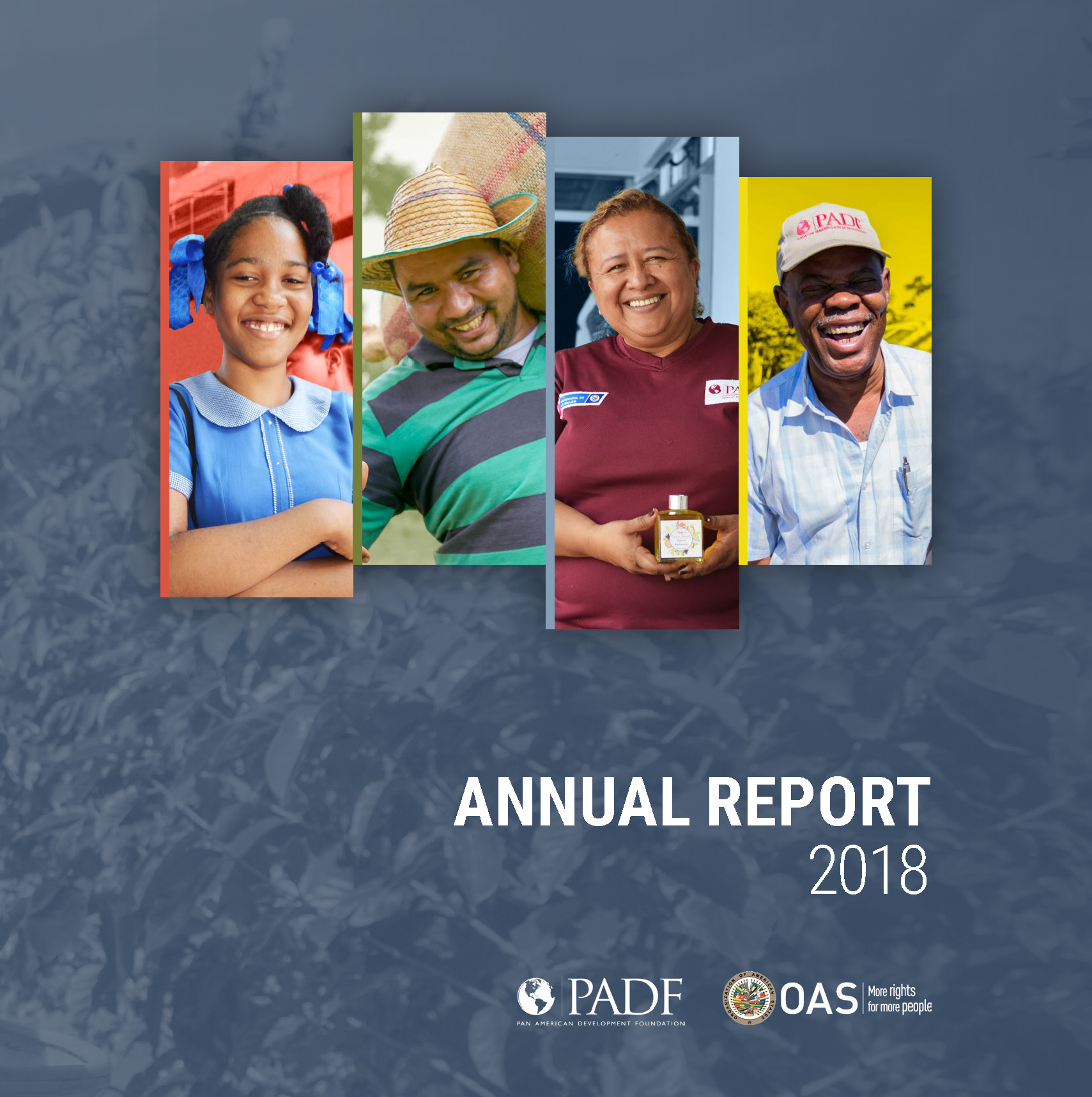 Annual Report 2018 1.jpg