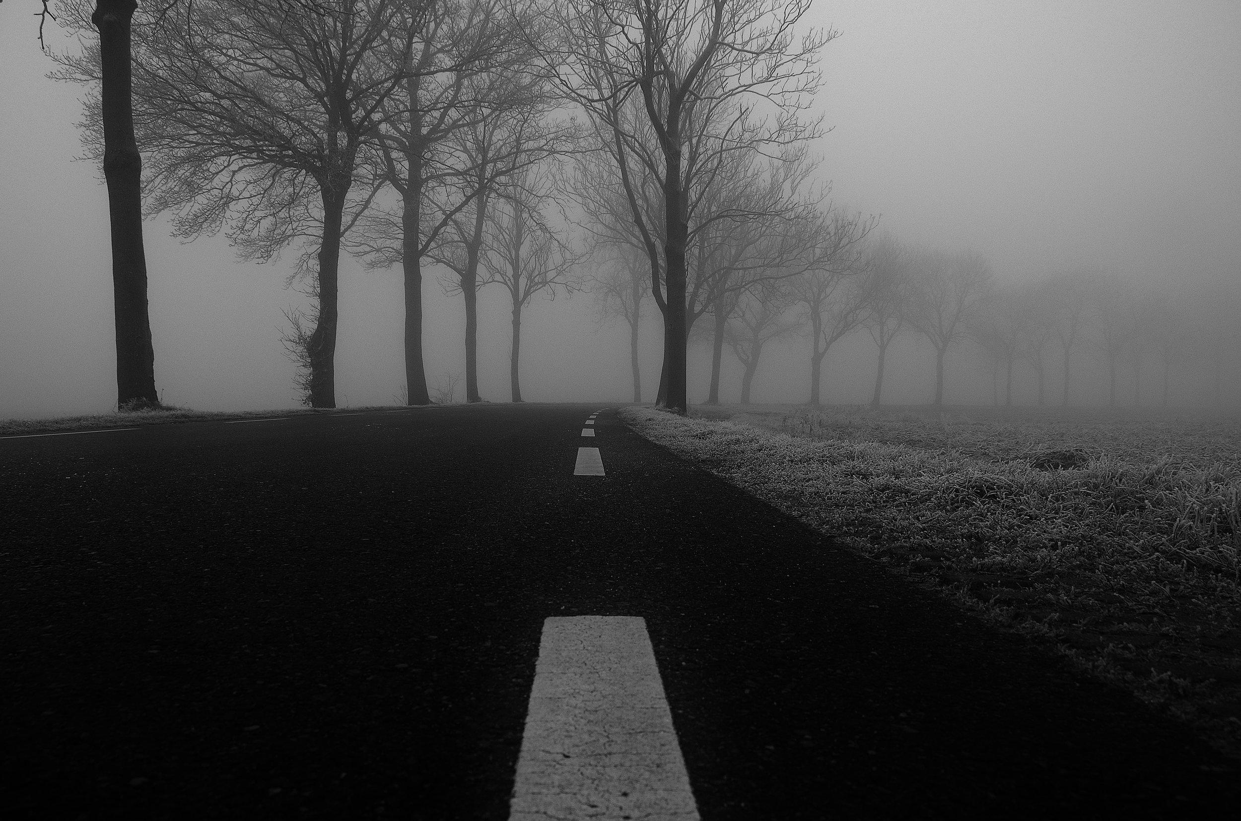 fog_road_2.jpg