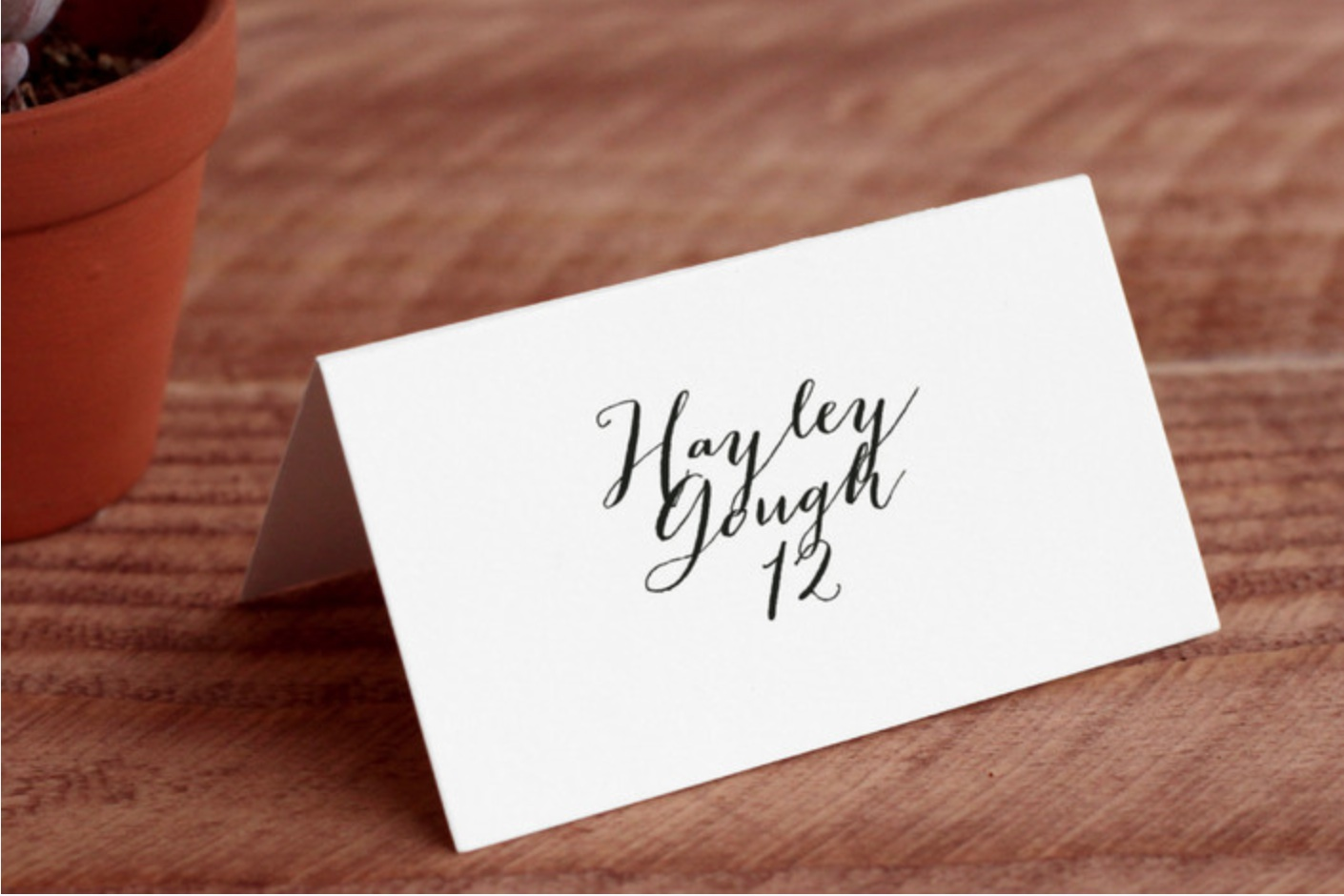 MODERN MINT PLACE CARDS