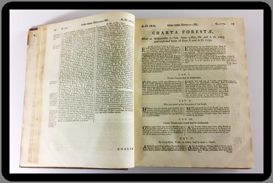 Magna Charta - page10.png