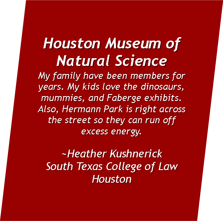 My family have been members of the  Houston Museum of Natural Science  for years. My kids love the dinosaurs, mummies, and Faberge exhibits. Also, Hermann Park is right across the street so they can run off excess energy.  ~Heather Kushnerick  South Texas College of Law Houston