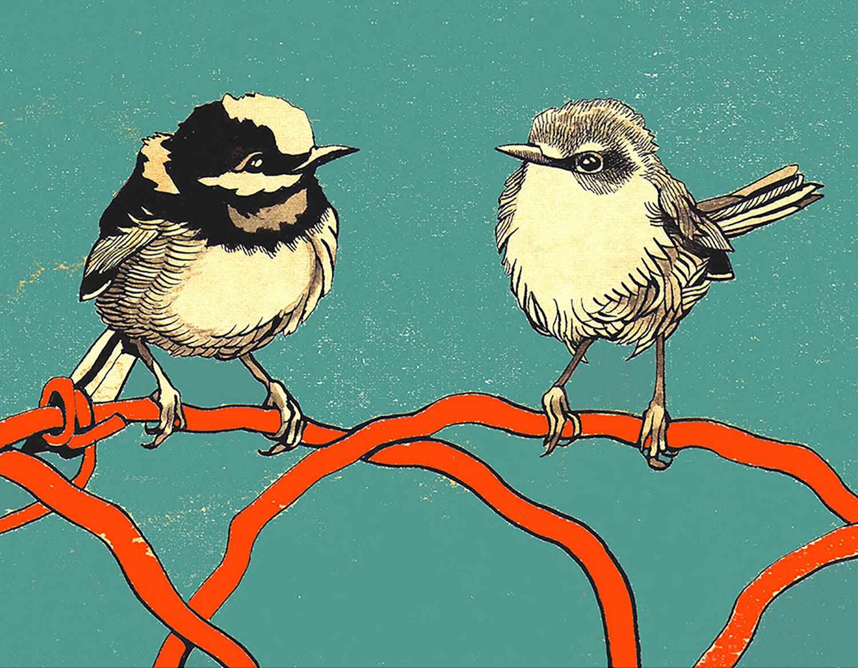 BIRD COUPLE 8x10 WEBSITE.jpg