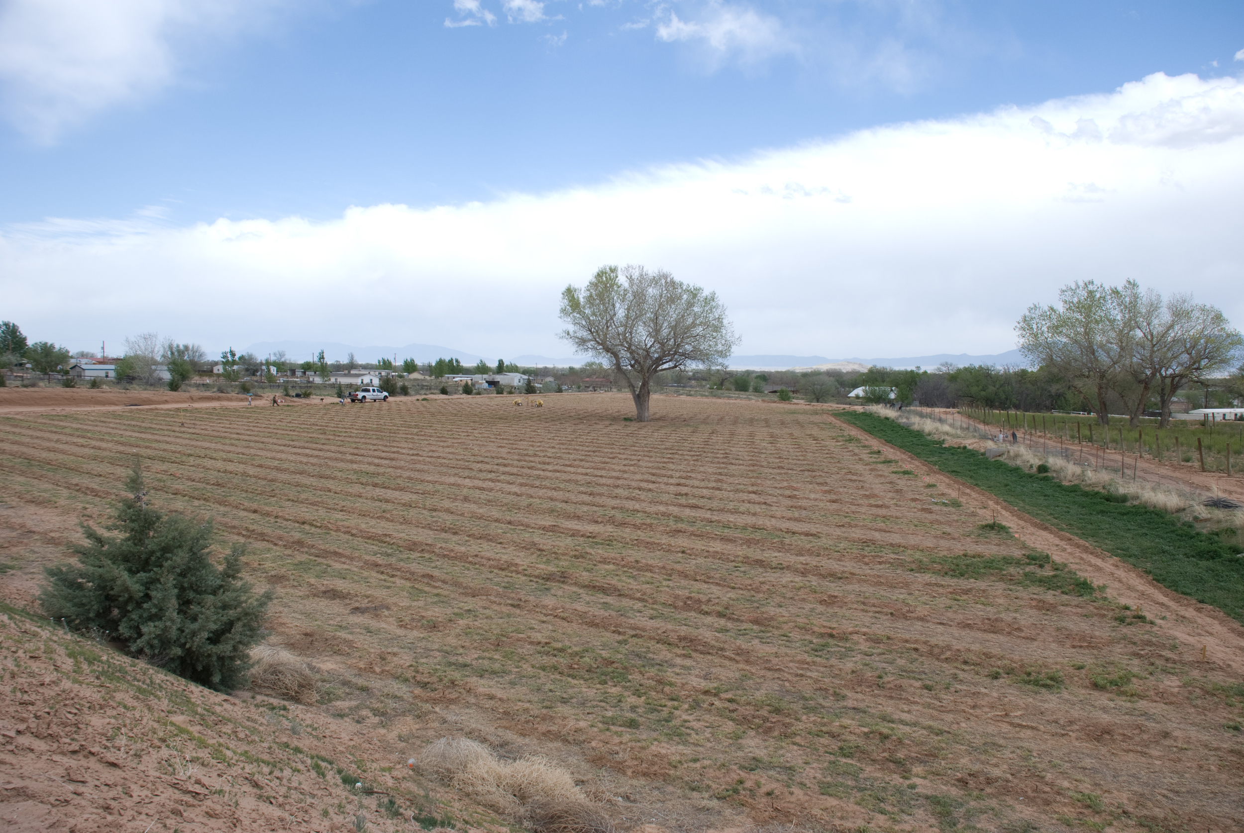 Second Field