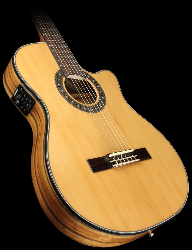Fender 240sce 01
