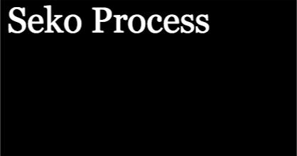 Seko Process