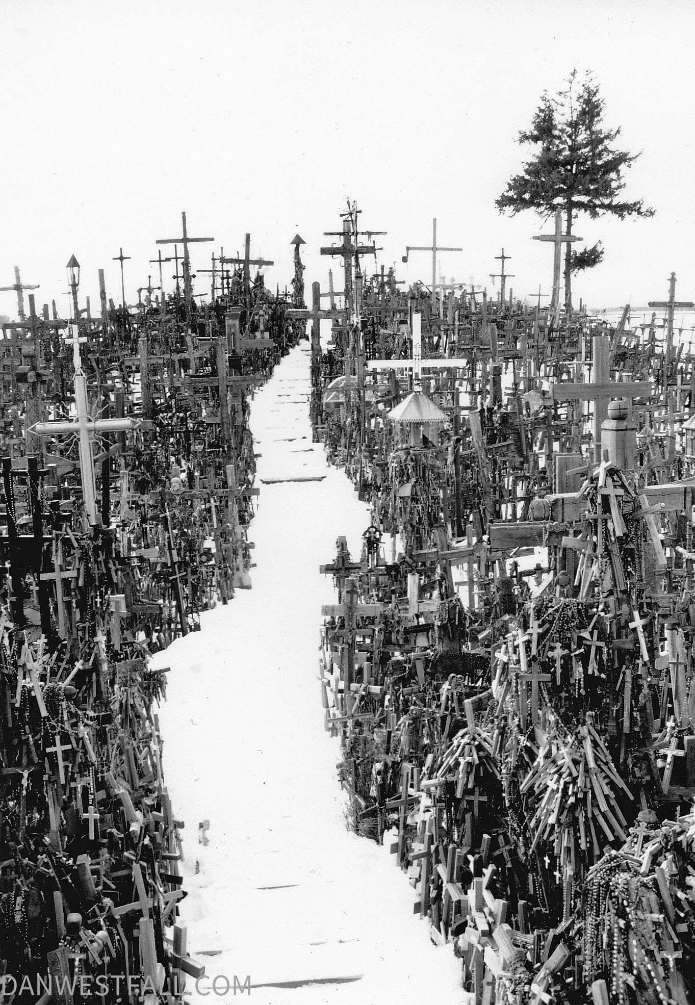 Lithuania. Hill of Crosses 2. #0556