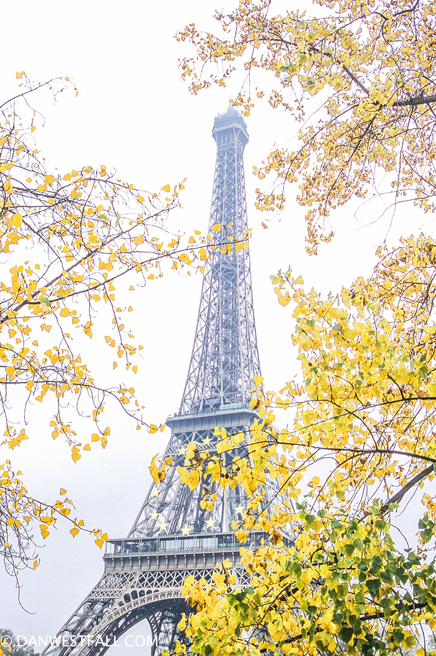 Paris. Eiffel Tower with fall colors. #0390