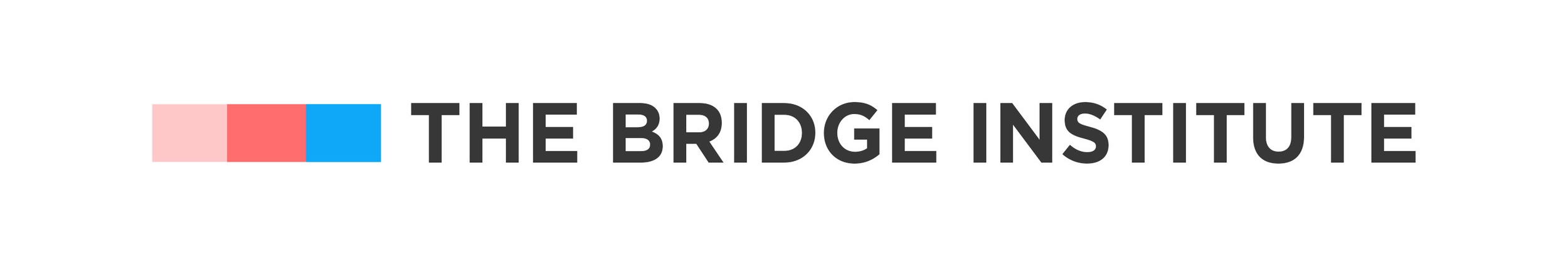 Placeholder for The Bridge Institute Logo