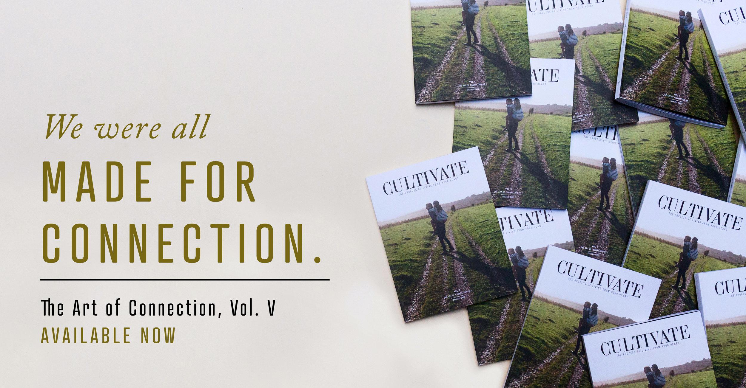 vol.5.promo.1 2 copy.jpg