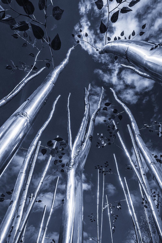 Metal tree419 cold.jpg