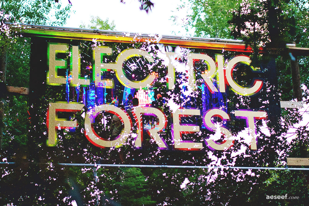 Electric Forest 2016 - Blend tag.jpg