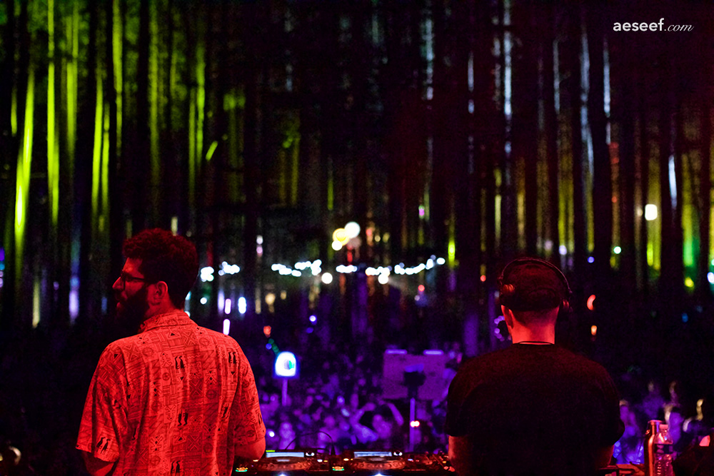 Electric Forest 2016 - Soul Clap Forest tag.jpg