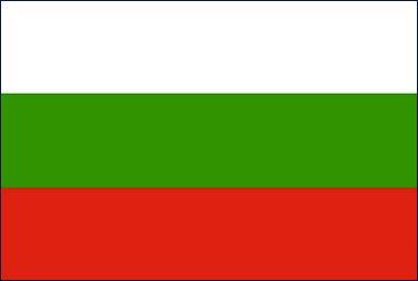 Flag 9.jpg