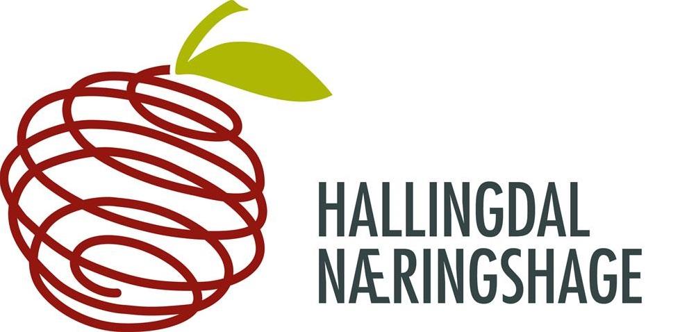 EUROPE-NO-Hallingdal Næringshage AS.jpg