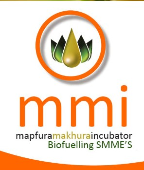 SA-PRE-Mapfura Makhura Incubator.jpg