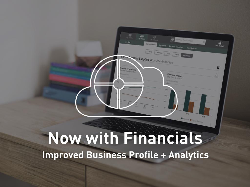 GrowthWheel Online Release- Financials.001.jpeg