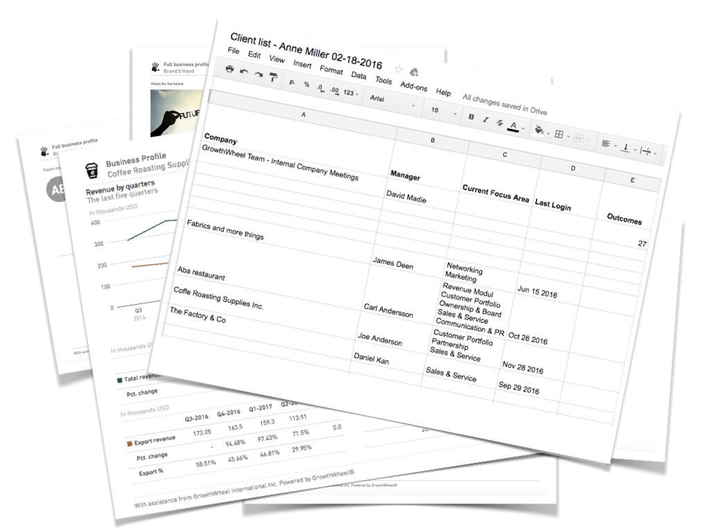 GrowthWheel Online Release- Financials.005.jpeg