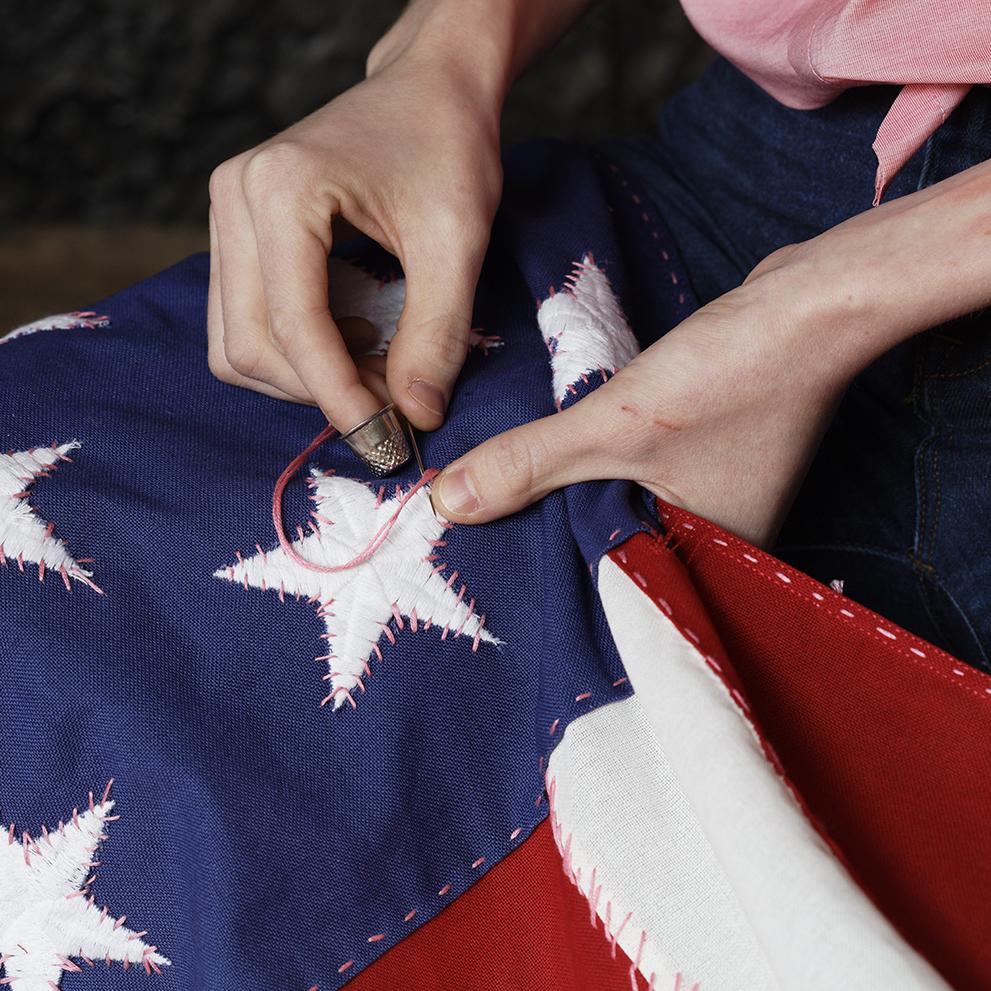 American Pussy Flag