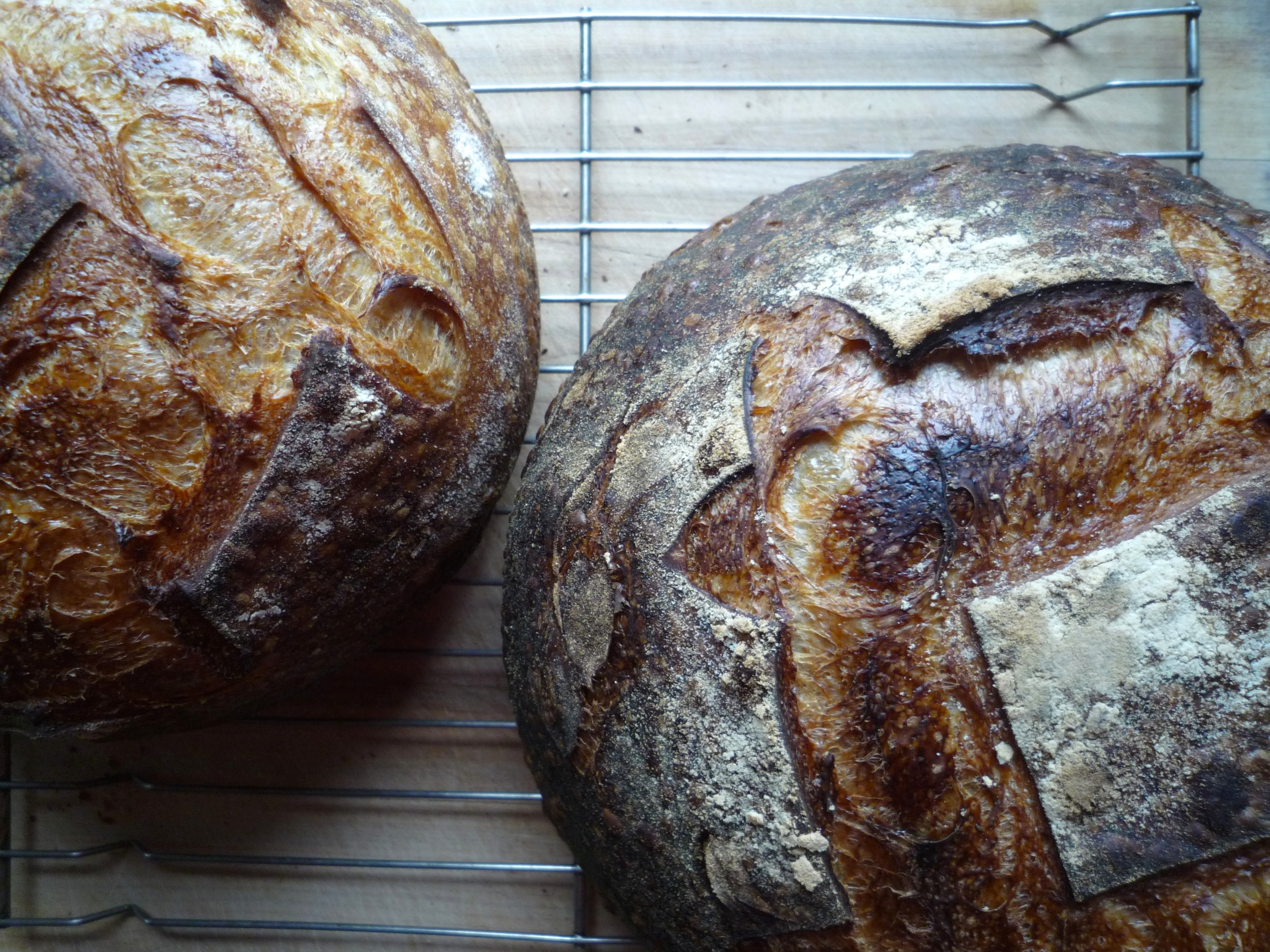 fig. g:   pain de campagne