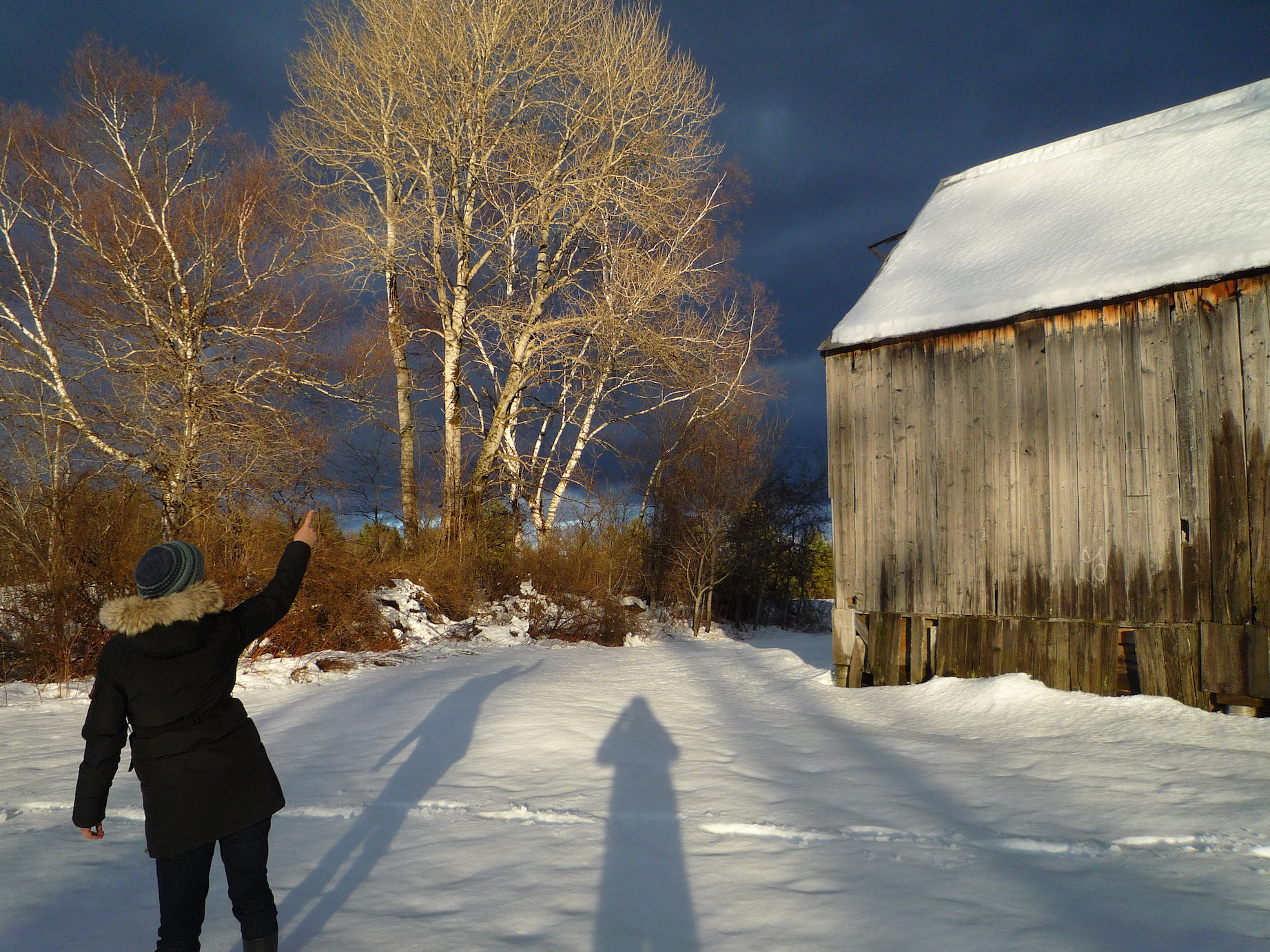 fig. c: sunlight on Vermont 2