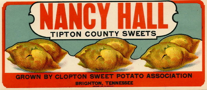 fig. b:  Nancy Hall sweets