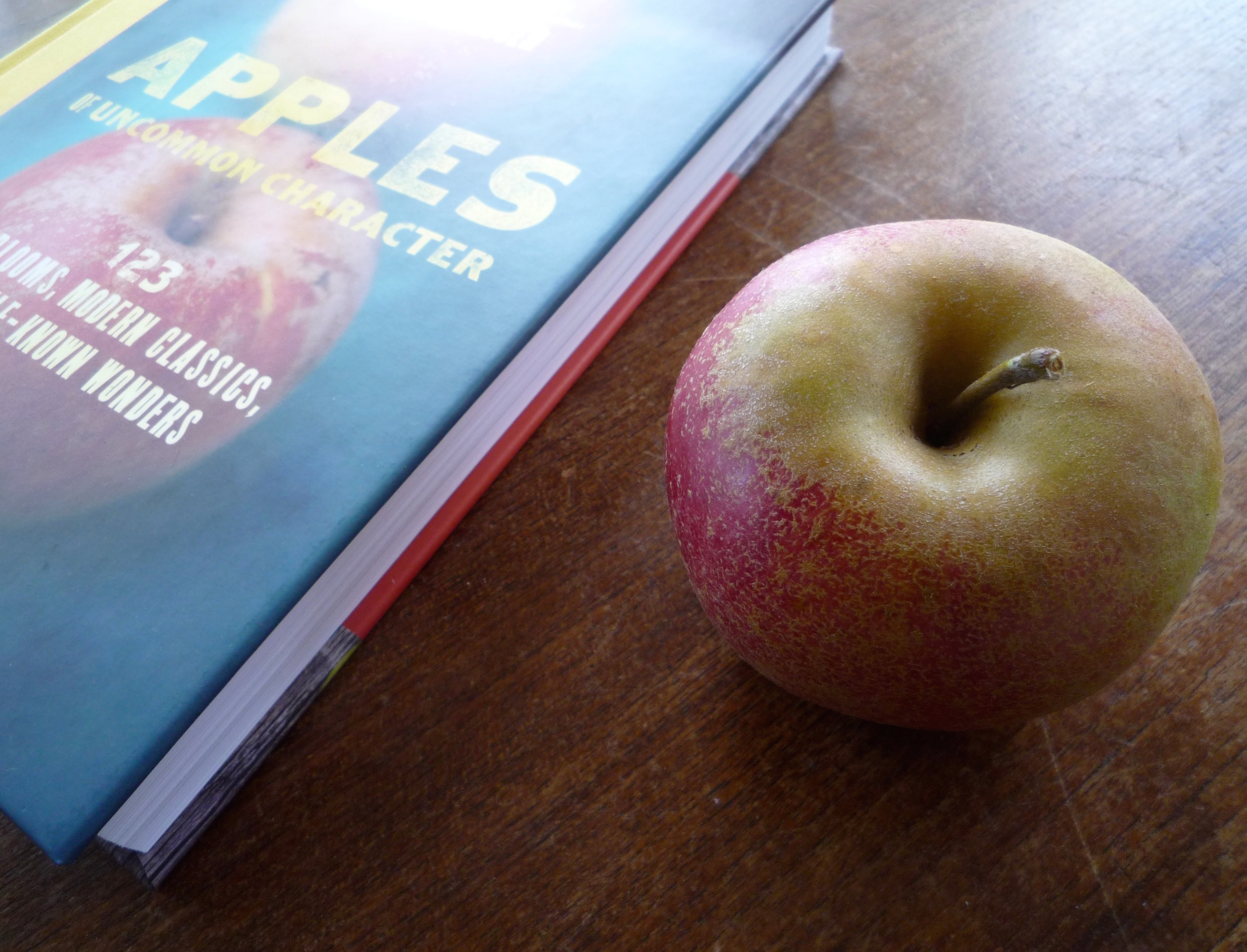 fig. b:  apples of uncommon character