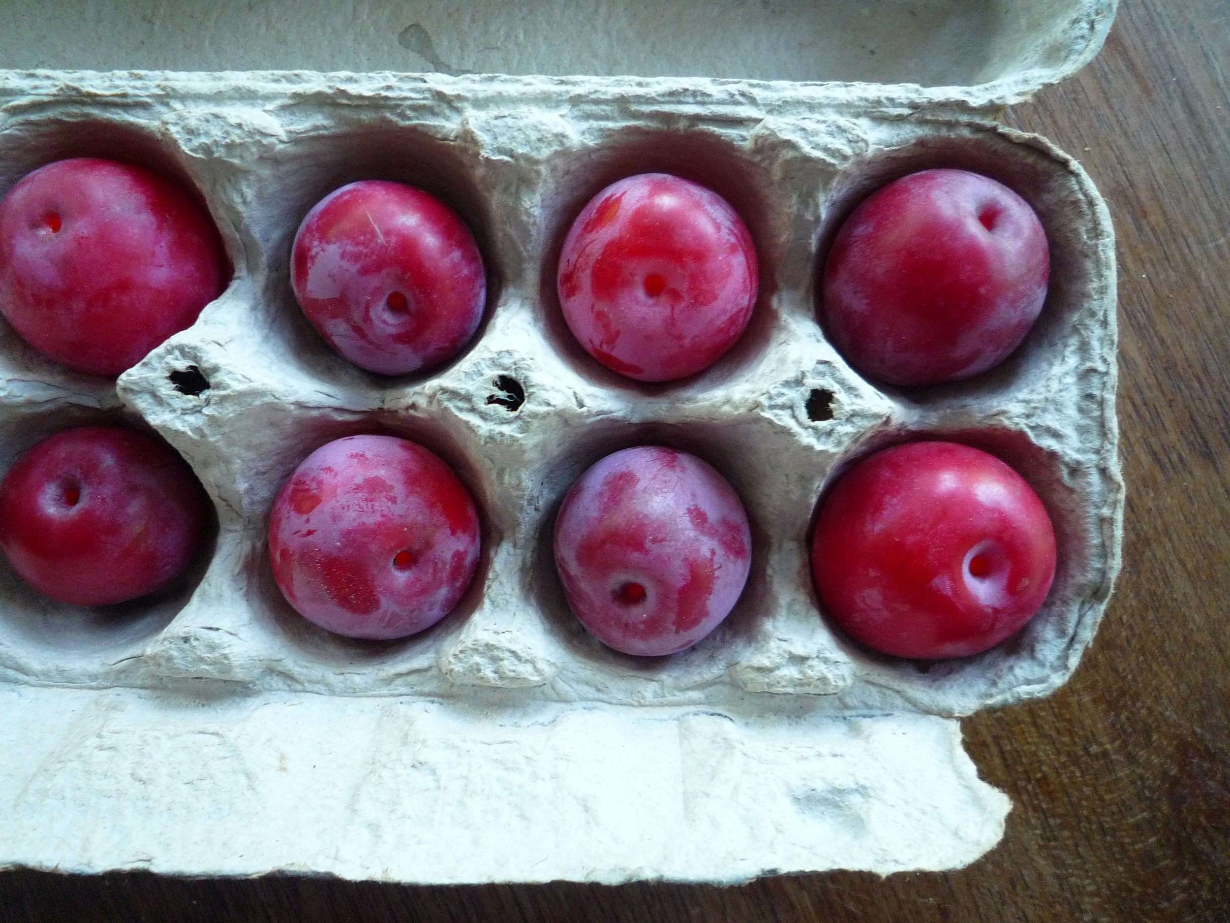 fig. a:  fresh plums