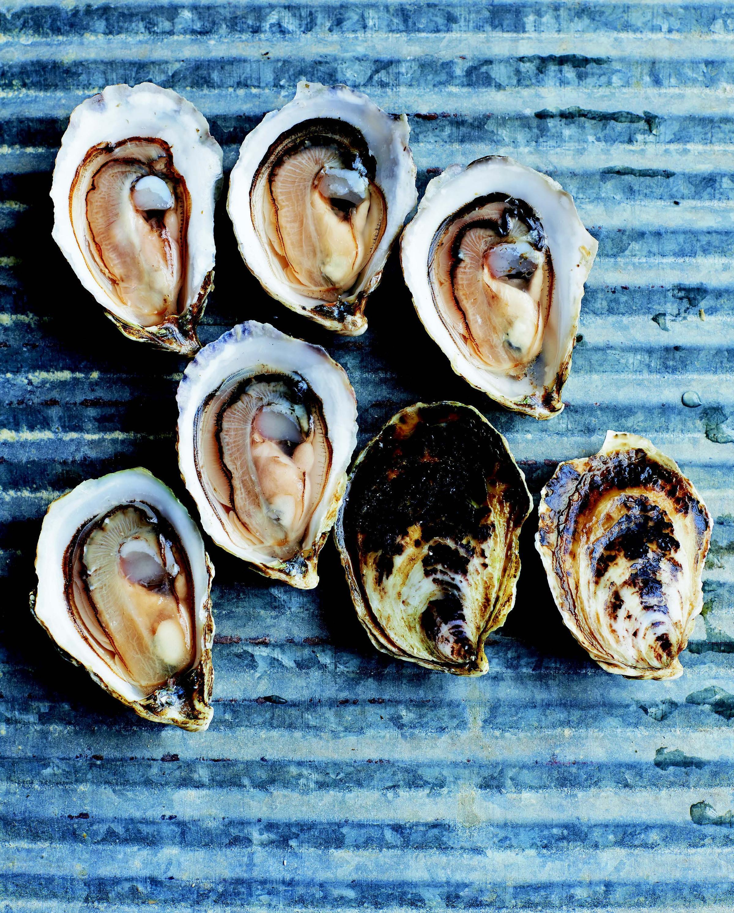 essential oyster.jpg